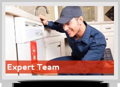 expert-team